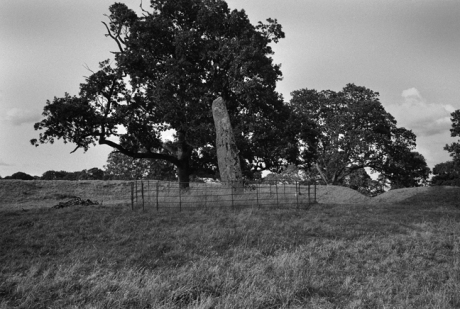 Standing Stone, Rath, Megalith