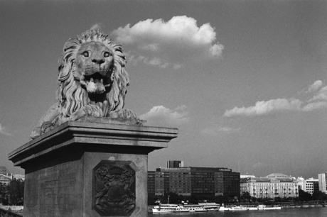 Gaurdian Lion, Széchenyi Chain Bridge, Budapest, Hungary, June 2001