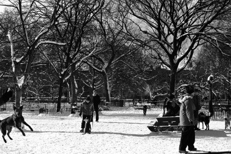 Tompkins Square, East Village, Manhattan, New York, January 2001