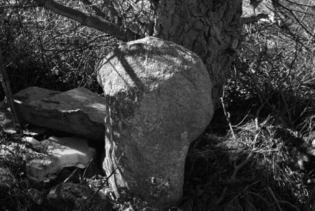 Standing Stone, Cross