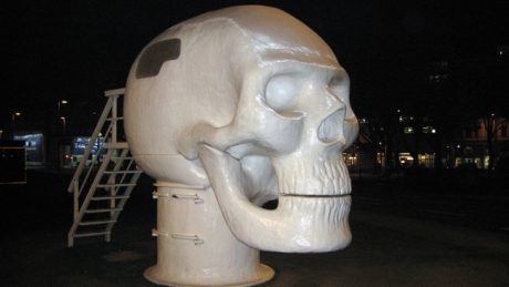 The Wellness Skull, Vienna, Austria, January 2009