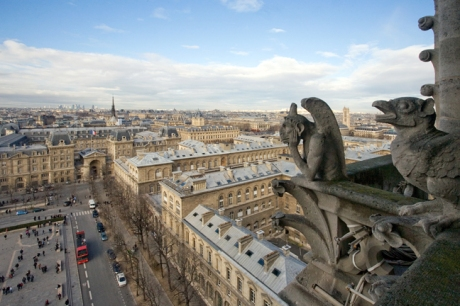 Gargoyle, Notre-Dame, Paris, France, January 2010