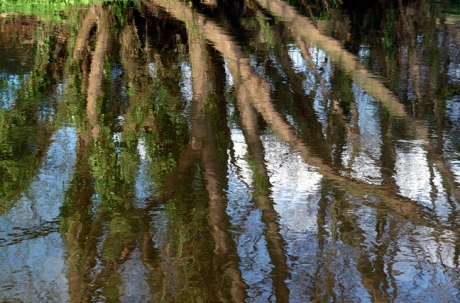 The River Dodder, Dublin, Co. Dublin, Ireland, July 2001