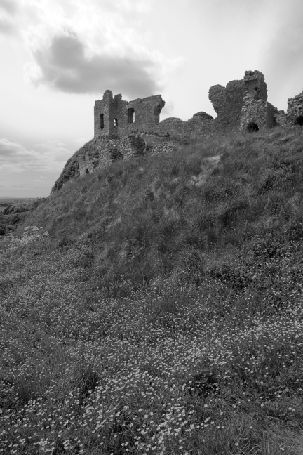 Rock of Dunamase, Co Laois, Ireland, May 2010