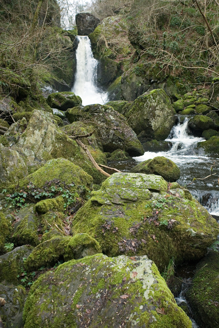 The Devils Glen, Co. Wicklow, Ireland, January 2012