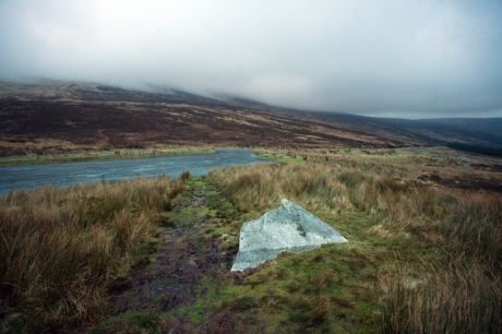 Turlough, Co. Wicklow, Ireland, January 2012 © Tom O'Connor 2012