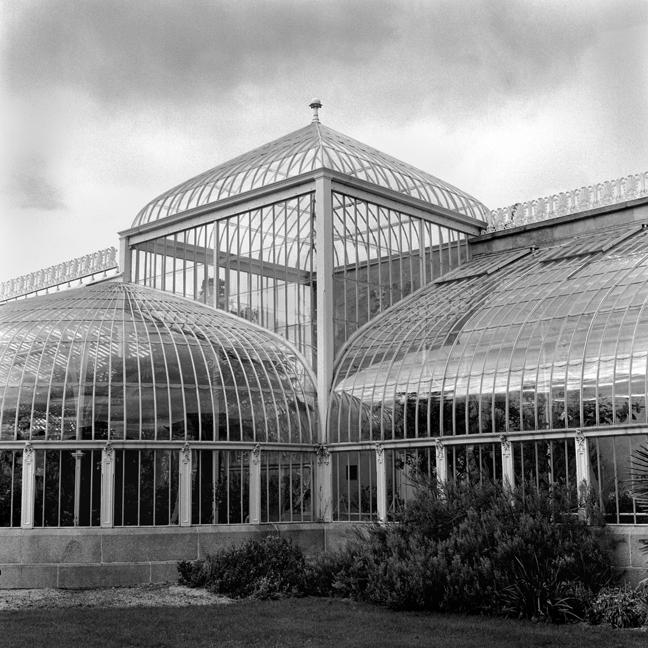 Botanical Gardens, Dublin, Co. Dublin, Ireland, February 2006