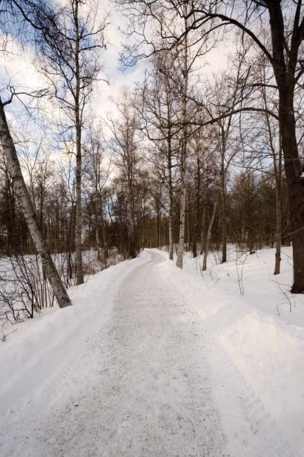 Djurgårdsbrunnsvägen, Stockholm, Sweden, February 2011