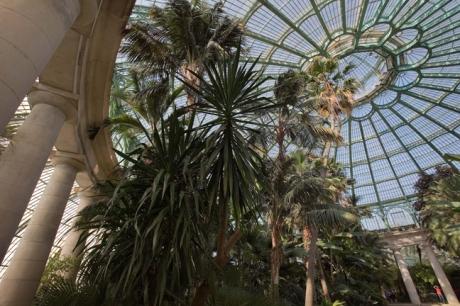 Grand Jardin d'hiver, Serres Royales de Laeken, Brussels, Belgium, May 2011