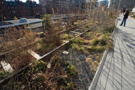 The High Line, Manhattan, New York, America, January 2012