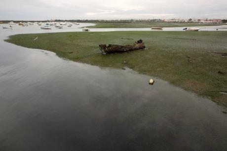Ria da Formosa, Faro, Portugal, November 2012