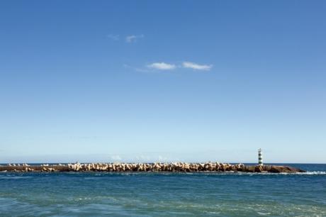 Ilha do Farol , Faro, Portugal, November 2012
