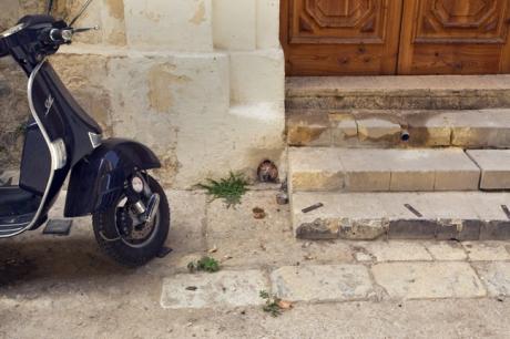 Triq San Paul, Valletta, Malta, July 2018