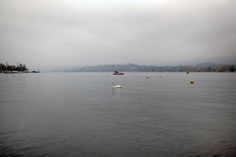 Zürichsee, Zürich, Switzerland, November 2018