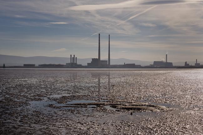 from Bull Island, Dublin, Ireland, March 2017 © Tom O'Connor 2017