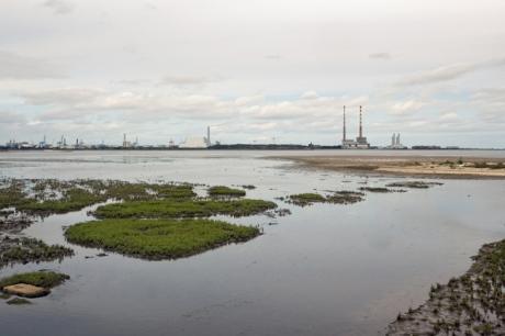 Merrion Strand, Dublin, Ireland, August 2019 © Tom O'Connor 2019