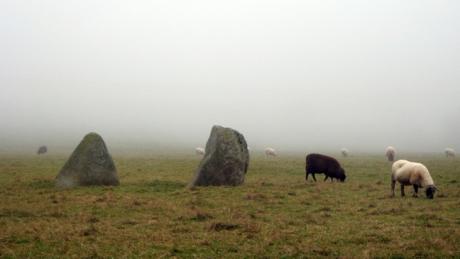 Boherboy Standing Stones, Dublin, Ireland, January 2020