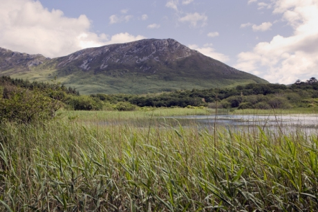 Pollacapall Lough, Galway, Ireland, June 2020