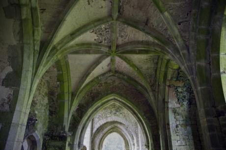 Kilcooley Abbey, Tipperary, Ireland, June 2020