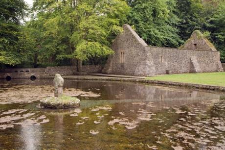Gortmore, Tipperary, Ireland, June 2020