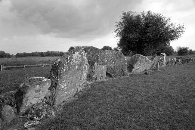 Grange Stone Circle, Limerick, Ireland, 2021